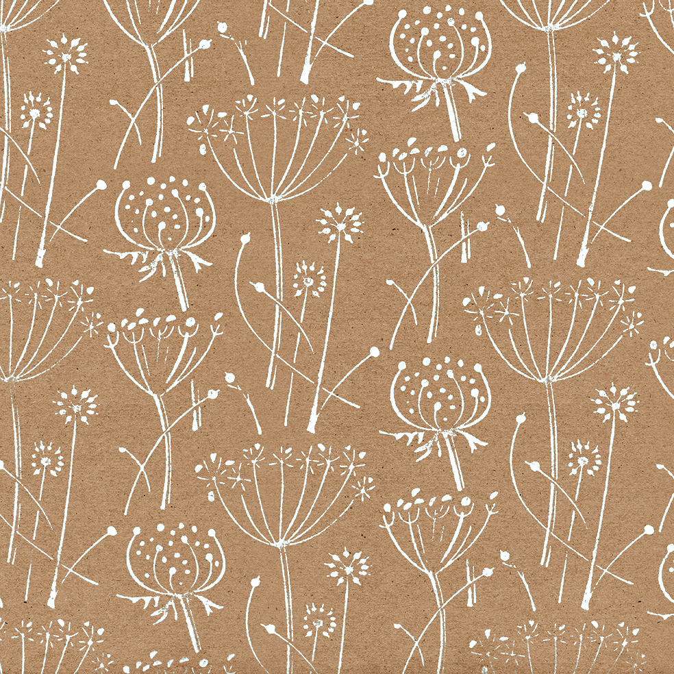 Seed Head White Gift Wrap Med Wrapped By Alice