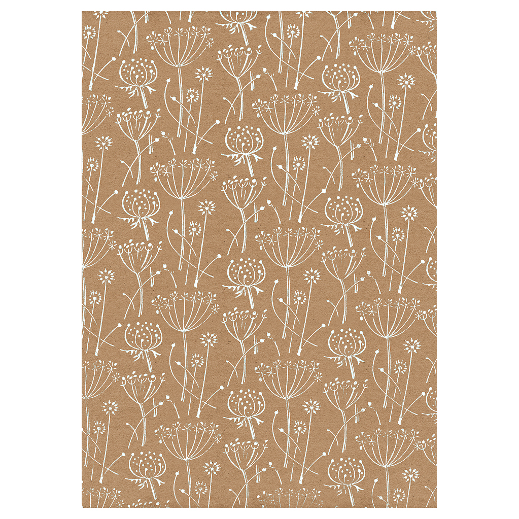 Seed Head White Wrapping Paper Wrapped By Alice