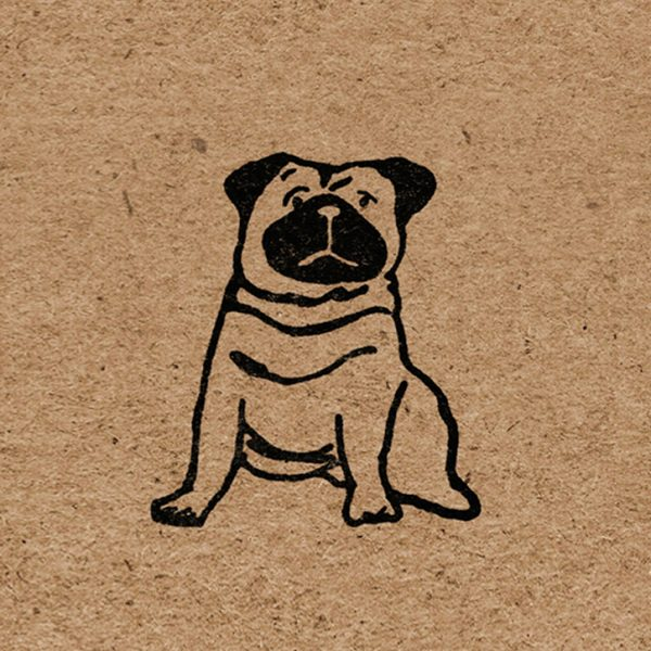close up of pug illustration