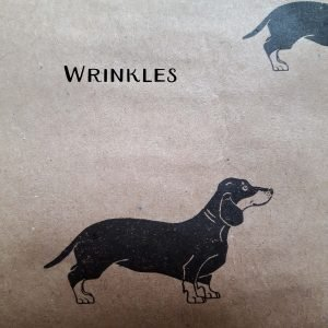 Image showing wrinkles on seconds wrapping paper sheets, dachshund print