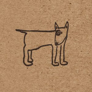 close up of english bull terrier wrapping paper