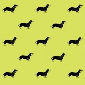 dachshund wrapping paper - pistachio ghreen option