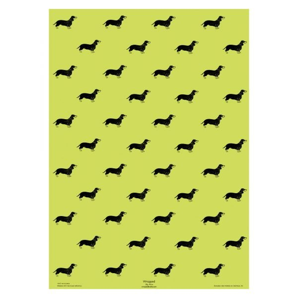 full sheet of pistachio green dachshund wrapping paper