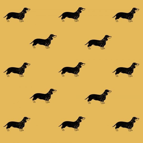 sausage dog wrapping paper - dachshunds on yellow paper